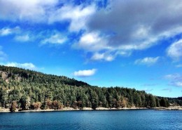 Salt Spring Island - Economic Development Meeting